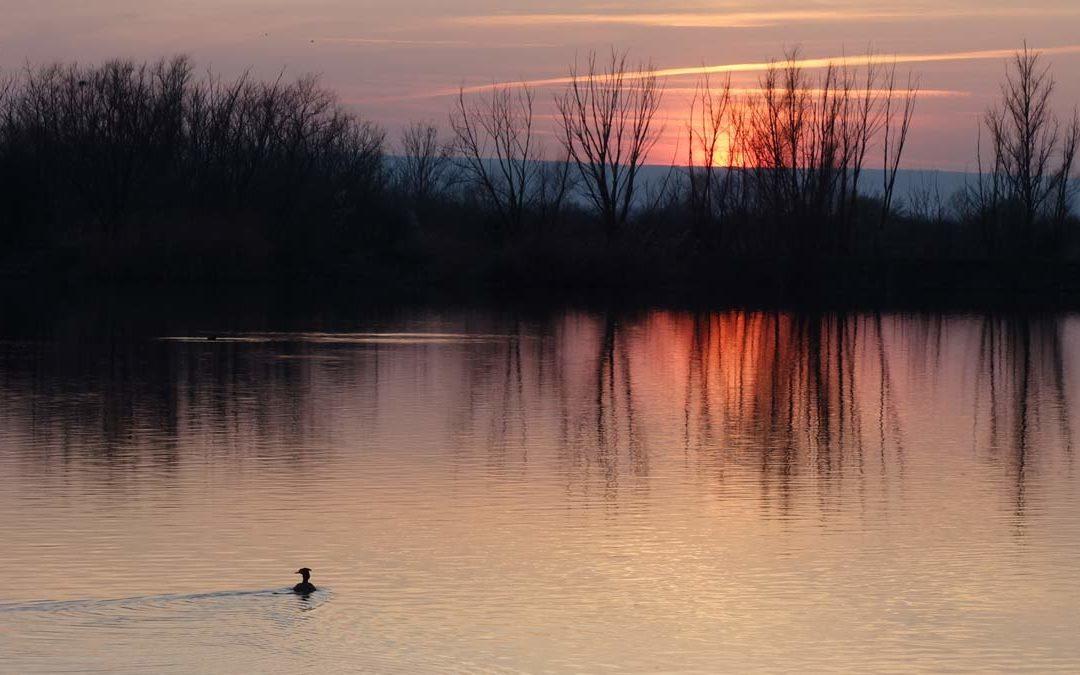 Die Erfurter Seen in der kalten Jahreszeit