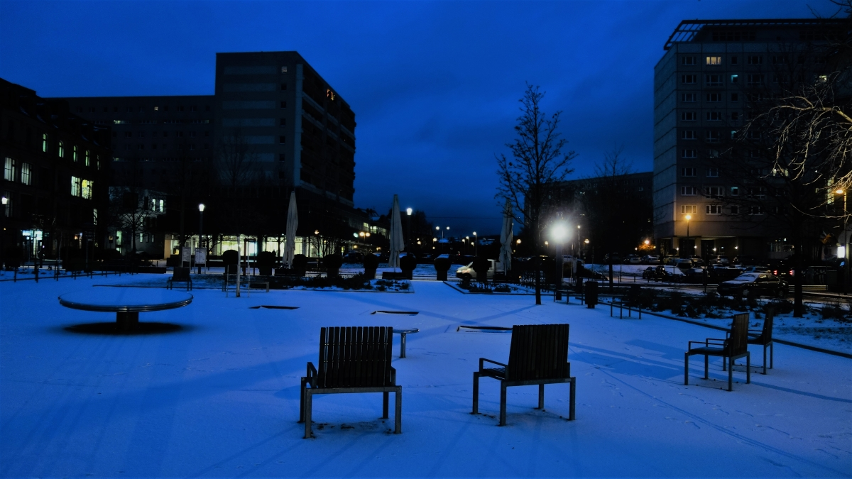 Der Hirschgarten Erfurt im Schnee