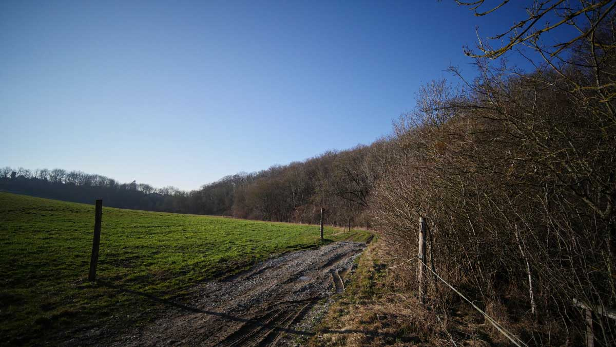 Ein Feldweg zwischen einer Koppel und dem Peterbach bei Rohda-Haarberg einem Ortsteil der Landeshauptstadt Erfurt
