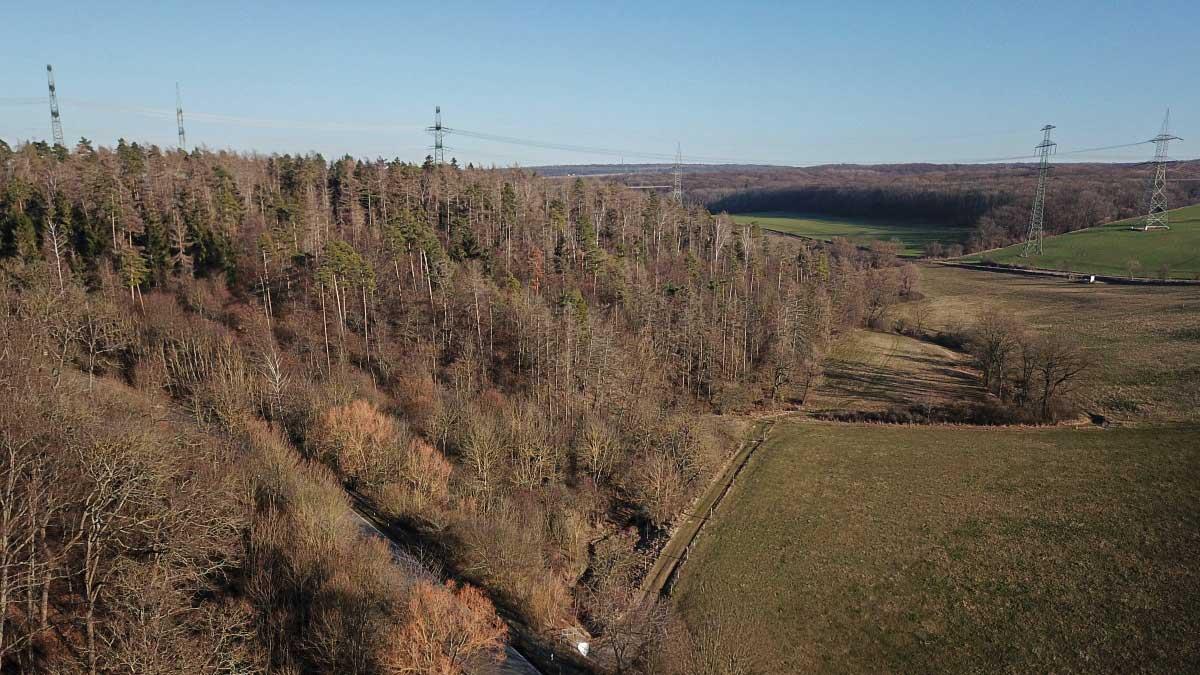 Stromtrassen überqueren das südliche Tal des Peterbachs in Erfurt
