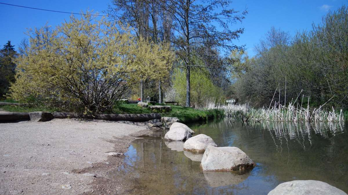 Am Espachpark befindet sich ein kleiner Strand