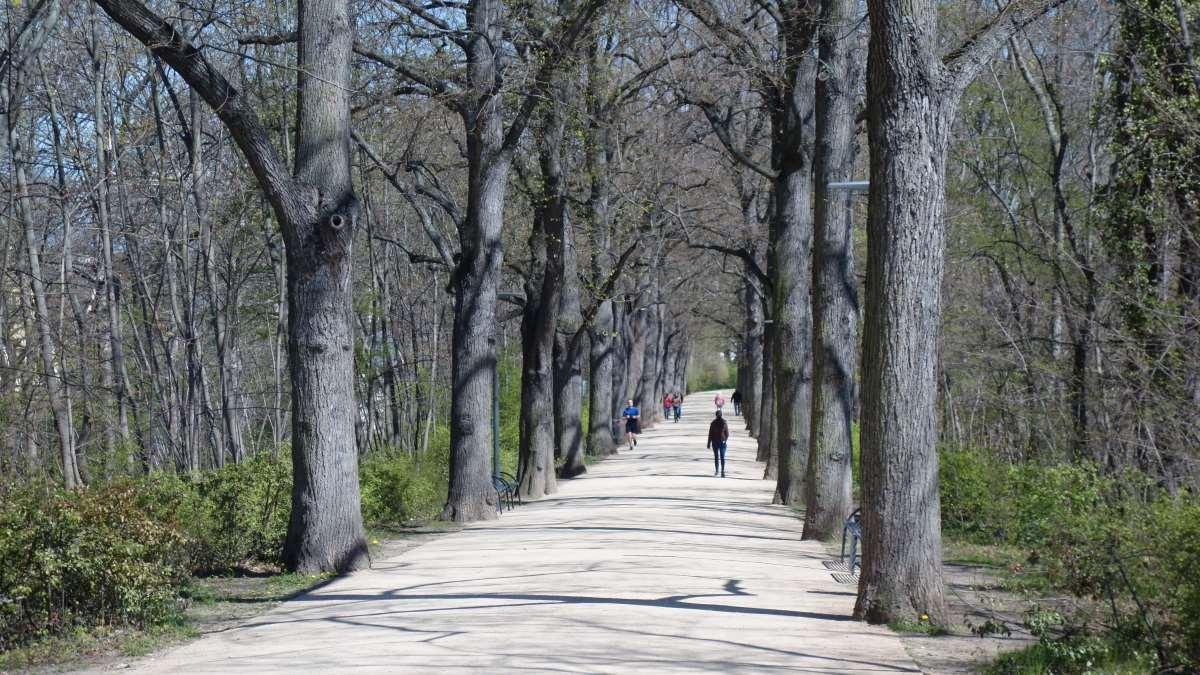 Die Espachpromenade zwischen Walkstrom und Flutgraben