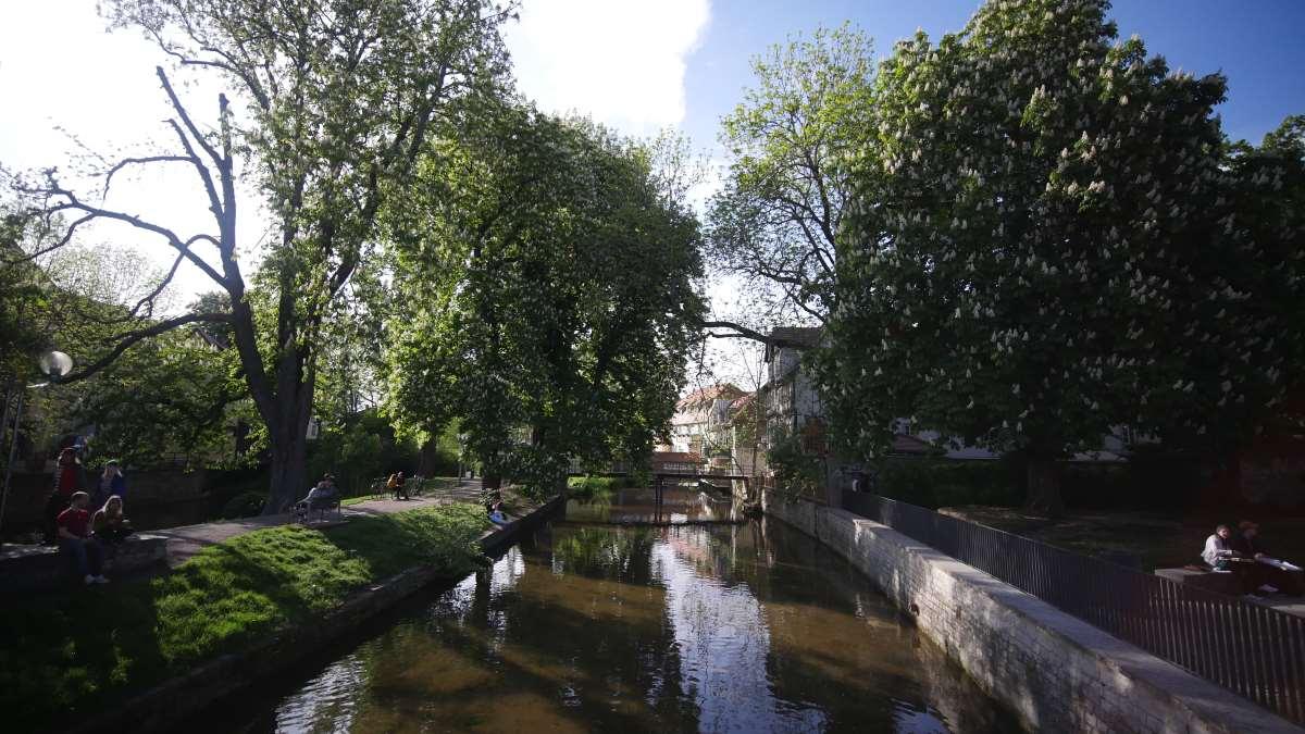 Der Breitstrom in Erfurt Altstadt vor Venedig