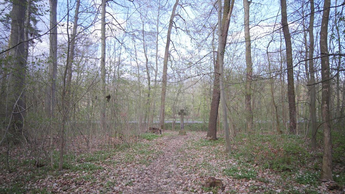 Das Mönchskreuz im Steigerwald Erfurt steht im Wald an der Arnstädter Strasse