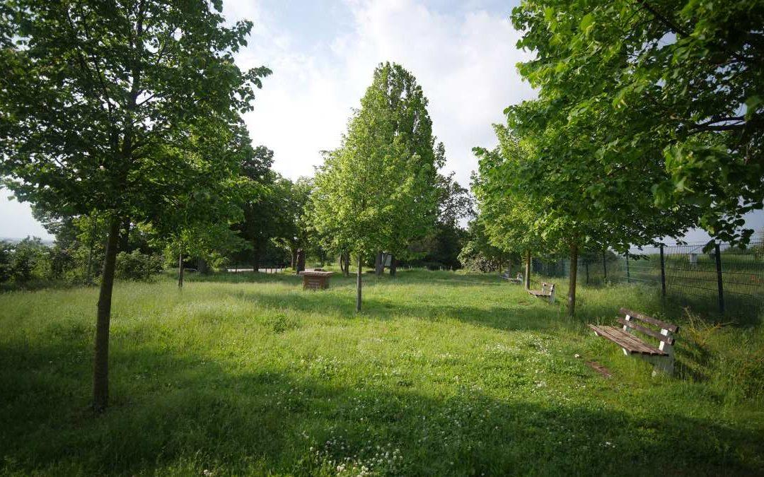 Der Lutherstein bei Stotternheim